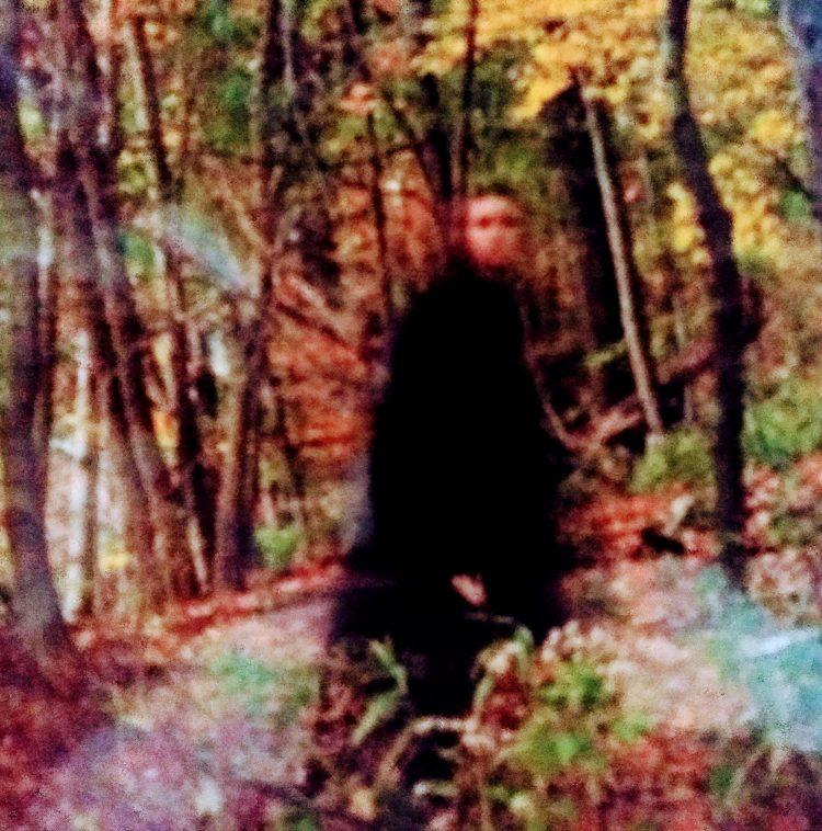 spooky girl in forest